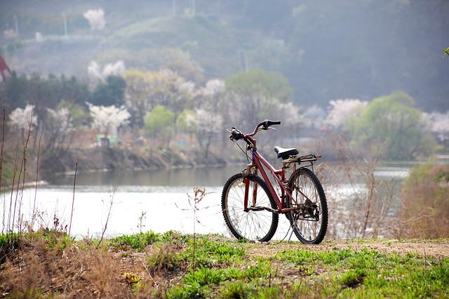 Prenez votre vélo cet été pour visiter la Vendée