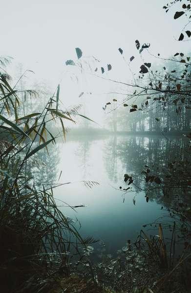 pêche lac de grand lieu